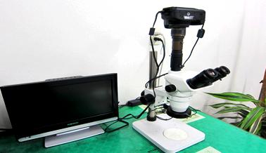 写真撮影可能顕微鏡